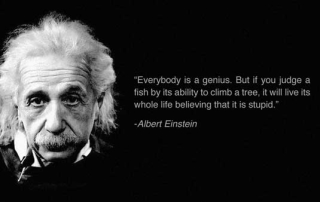 Everybody is a genius Einstein